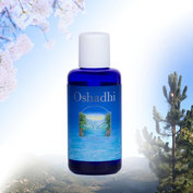 Oshadhi - Geranium - Hydrolaat