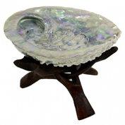 Abalone schelp Haliotis Midea GROOT voor smudging ZONDER driepoot