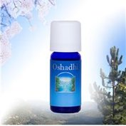 Patchouli - Oshadhi Etherische Olie