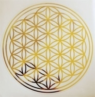 Sticker Flower of Life - Levensbloem - Bloem des Levens