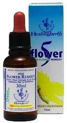 5 Flower - Rescue Remedy - Bach Bloesem Remedie