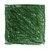 LYRA Kleurreus ongelakt – NO.067 SAPGROEN